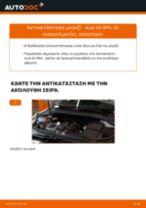 PDF εγχειρίδιο αντικατάστασης: Μπουζί AUDI A3 Sportback (8PA)