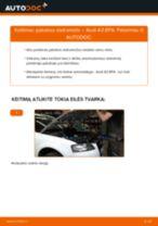 Kaip pakeisti Audi A3 8PA pakabos statramstis: priekis - keitimo instrukcija