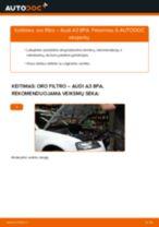 Kaip pakeisti Audi A3 8PA oro filtro - keitimo instrukcija
