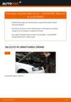 Schimbare Amortizor AUDI A3: manual de intretinere si reparatii