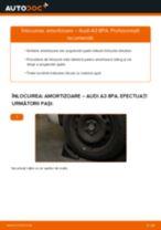 Montare Kit amortizoare AUDI A3 Sportback (8PA) - tutoriale pas cu pas