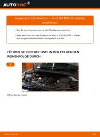 Wie der Wechsel durchführt wird: Zündkerzen 2.0 TDI 16V Audi A3 8P tauschen