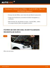 Wie der Wechsel durchführt wird: Ölfilter 2.0 TDI 16V Audi A3 8P tauschen