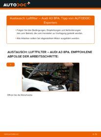 Wie der Wechsel durchführt wird: Luftfilter 2.0 TDI 16V Audi A3 8P tauschen