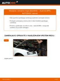 Kako izvesti menjavo: Blazilnik na 2.0 TDI 16V Audi A3 8pa