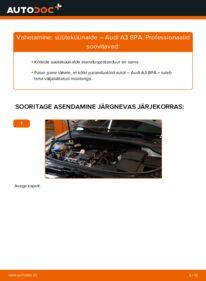 Kuidas välja vahetamist läbi viia: 2.0 TDI 16V Audi A3 8pa Süüteküünal