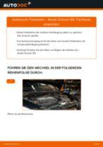 Fiat Ducato 230 Bus Getriebehalter ersetzen - Tipps und Tricks