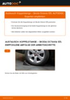Ratschläge des Automechanikers zum Austausch von SKODA Skoda Octavia 2 Combi 1.6 TDI Radlager