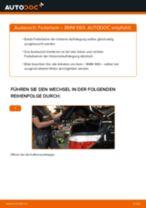Wie BMW E60 Federbein hinten wechseln - Anleitung