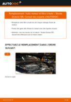Comment changer : huile moteur et filtre huile sur Skoda Octavia 1Z5 - Guide de remplacement