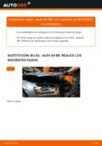 Cómo cambiar: bujía - Audi A4 B8 | Guía de sustitución
