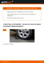 Mekanikerens anbefalinger om bytte av SKODA Octavia 1z5 1.6 TDI Støtdemper