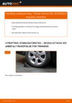 Mekanikerens anbefalinger om bytte av SKODA Octavia 1z5 1.6 TDI Stabilisatorstag