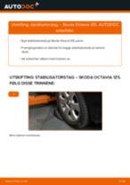 PDF med trinn for trinn-veiledning for bytte av SKODA OCTAVIA Combi (1Z5) Stabilisatorstag
