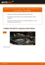 PDF návod na výměnu: Olejovy filtr SKODA Octavia II Combi (1Z5)