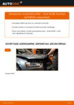 Kuidas vahetada Audi A4 B8 mootoriõli ja filtrit – õpetus