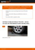 Remonto Komplektas Stabdžių Apkaba pakeitimas Ford Fiesta Mk6 Sedanas - patarimai ir gudrybės