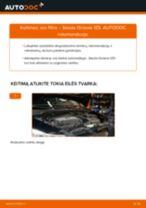 Automechanikų rekomendacijos SKODA Octavia 1z5 1.6 TDI Oro filtras, keleivio vieta keitimui