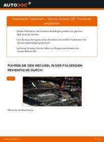 Wie der Wechsel durchführt wird: Stoßdämpfer 1.9 TDI Skoda Octavia 2 Combi tauschen