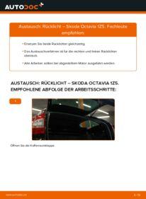 Wie der Wechsel durchführt wird: Heckleuchte 1.9 TDI Skoda Octavia 2 Combi tauschen