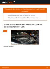 Wie der Wechsel durchführt wird: Zündkerzen 1.9 TDI Skoda Octavia 2 Combi tauschen