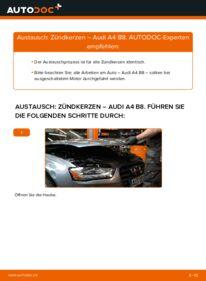 Wie der Wechsel durchführt wird: Zündkerzen 2.0 TDI Audi A4 B8 tauschen