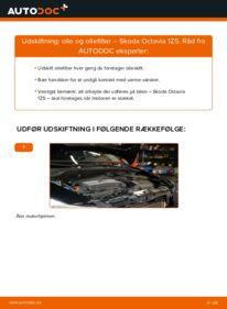 Hvordan man udfører udskiftning af: Oliefilter på 1.9 TDI Octavia 1z5