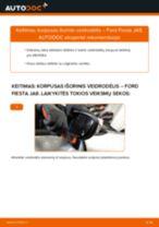 Kaip pakeisti Ford Fiesta JA8 korpusas išorinis veidrodėlis - keitimo instrukcija