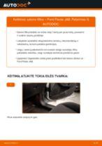 Kaip pakeisti Ford Fiesta JA8 salono filtro - keitimo instrukcija