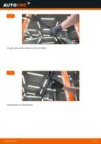 Kaip pakeisti Ford Fiesta JA8 valytuvų: priekis - keitimo instrukcija