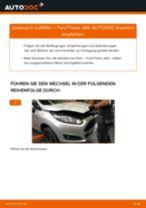 Wie Radzylinder hinten links beim BMW G01 wechseln - Handbuch online
