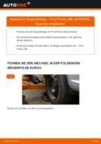 FORD Stabistange hinten links selber wechseln - Online-Anweisung PDF