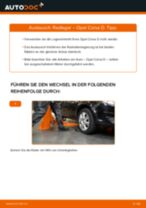 Wie Opel Corsa D Radlager vorne wechseln - Anleitung