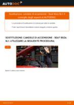 PDF manuale di sostituzione: Candele motore SEAT Ibiza III Hatchback (6L)