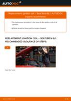 BOSCH 0 221 119 027 for Ibiza III Hatchback (6L)   PDF replacing instruction
