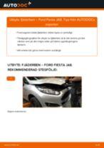 PDF guide för byta: Fjäderben FORD Fiesta Mk6 Hatchback (JA8, JR8) bak och fram
