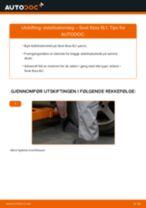 Veiledning på nettet for å skifte Sladrespeil i Ford Mondeo bwy selv