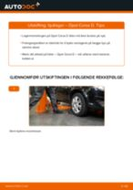 Lær hvordan du fikser Hjullager bak venstre høyre OPEL problemet