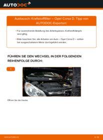 Wie der Wechsel durchführt wird: Kraftstofffilter 1.3 CDTI (L08, L68) Opel Corsa D tauschen
