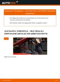Wie der Wechsel durchführt wird: Zündspule 1.9 TDI Seat Ibiza 6L1 tauschen