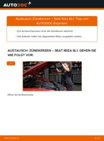 Wie der Wechsel durchführt wird: Zündkerzen 1.9 TDI Seat Ibiza 6L1 tauschen