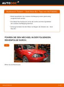 Wie der Wechsel durchführt wird: Federn 1.9 TDI Seat Ibiza 6L1 tauschen