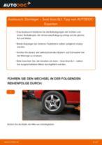 Anleitung: Seat Ibiza 6L1 Domlager hinten wechseln