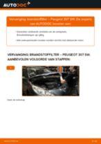 MANN-FILTER P 707 voor 307 SW (3H) | PDF handleiding voor vervanging