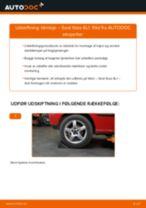 Udskift tårnleje bag - Seat Ibiza 6L1   Brugeranvisning