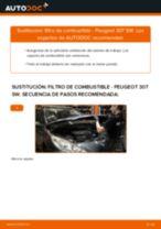 Cómo cambiar: filtro de combustible - Peugeot 307 SW | Guía de sustitución