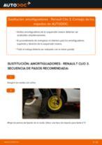 Aprender cómo solucionar el problema con Amortiguadores delanteros RENAULT