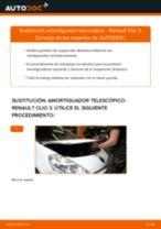 Reemplazar Amortiguador RENAULT CLIO: pdf gratis
