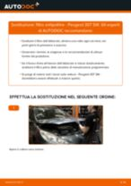 Le raccomandazioni dei meccanici delle auto sulla sostituzione di Filtro Carburante PEUGEOT Peugeot 307 SW 1.6 16V