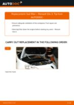 Fitting Silent blocks RENAULT CLIO III (BR0/1, CR0/1) - step-by-step tutorial
